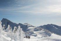 Groupe de skieurs debout sur une montagne enneigée en hiver — Photo de stock