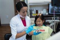 Женщина-дантист рассказывает о модели зубов в клинике — стоковое фото