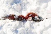 Gros plan du crochet de chasse-neige en saison enneigée — Photo de stock