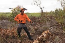 Молодой лесоруб, работающий в лесу — стоковое фото