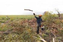 Дроворуб кидали дерев'яний журналу в лісі — стокове фото