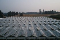 Aerial of futuristic glass roof of greenhouse in farmland. — Stock Photo