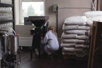 Жіночий працівник, поклавши пшениці в машині дробарка пшеницю заводу — стокове фото