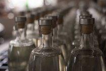 Крупный план бутылок на заводе — стоковое фото
