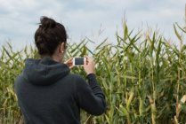 Visão traseira da mulher clicando fotos com câmera no campo — Fotografia de Stock