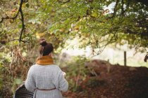 Rear view of woman with basket walking in green field — Stock Photo
