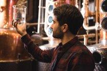 Людина, що вивчає зразки алкоголю в пивоварного заводу — стокове фото
