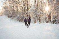 Два лижників, катання на лижах в Альпах snowy взимку — стокове фото