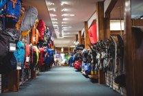 Variedade de sacos em prateleiras na loja — Fotografia de Stock