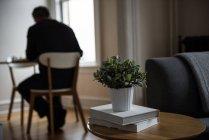 Libros y macetas en taburetes en casa - foto de stock