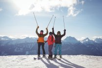 Celebrating skiers standing on snow covered mountain during winter — Stock Photo
