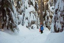 Skier walking with ski on snow covered mountains — Stock Photo