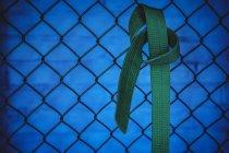 Крупный план зеленого пояса карате, висящего на сетке ограждения в фитнес-студии — стоковое фото