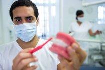 Männlicher Zahnarzt reinigt Kiefermodell mit Zahnbürste in Klinik — Stockfoto