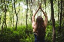 Задний вид женщины, занимающейся йогой в лесу в солнечный день — стоковое фото