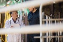Ветеринар та ферми працівник обговорювати над планшетного комп'ютера видно через паркан — стокове фото