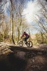 Вид сзади на горного велосипедиста на пешеходном мосту через ручей в лесу — стоковое фото