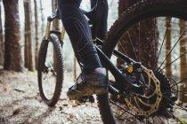 Низкая часть велосипедистов по деревьям в лесах — стоковое фото