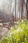 Катание на горных велосипедах в лесу в солнечный день — стоковое фото