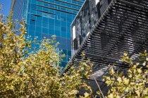 Будівельної конструкції сучасного будинку з зелене дерево — стокове фото