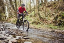 Front view of mountain biker in stream among trees at forest — стоковое фото