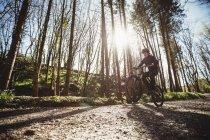 Горный велосипедист едет по грунтовой дороге у деревьев в лесу — стоковое фото