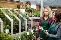 Due fioriste utilizzando tablet digitale nel centro del giardino — Foto stock