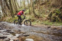 Side view of mountain biker in stream among trees at forest — стоковое фото