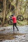 Вид сзади на велосипедиста, перевозящего велосипед при пересечении ручья в лесу — стоковое фото