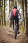 Вид сзади на горных байкеров, едущих по проселочной дороге в лесу — стоковое фото