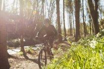 Горный велосипедист по ручью среди деревьев в лесу — стоковое фото