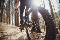 Низкая часть горных велосипедов езда на велосипеде в лесу — стоковое фото