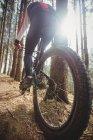 Вид сзади на велосипед для горных велосипедистов в лесу — стоковое фото