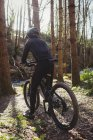 Rear view of mountain biker riding bicycle in forest — Stock Photo