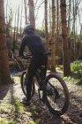 Вид сзади на велосипед горного велосипедиста в лесу — стоковое фото