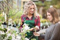 Fiorista dare consigli alle donne che acquistano fiori nel centro del giardino — Foto stock