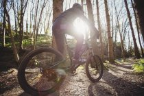 Mountain biker riding on dirt road in forest during sunny day — Stock Photo