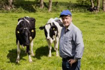 Retrato de agricultor confiante aguardando vacas no campo gramado — Fotografia de Stock