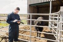 Landarbeiter schreibt in Klemmbrett, während er Kuh im Stall untersucht — Stockfoto
