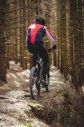 Вид сзади на горного велосипедиста, едущего по грунтовой дороге среди деревьев в лесу — стоковое фото