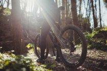 Низкая часть горного велосипедиста в лесу в солнечный день — стоковое фото