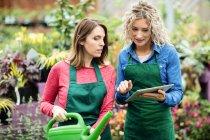 Zwei Floristinnen nutzen digitales Tablet im Gartencenter — Stockfoto