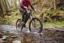 Низкая часть горных велосипедистов верхом в ручье в лесу — стоковое фото