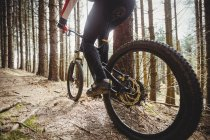 Низкая часть горных велосипедистов едет на деревьях в лесах — стоковое фото