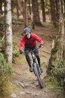 Велосипед на горном велосипеде среди деревьев в лесу — стоковое фото