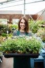 Portrait de femme fleuriste tenant le plateau des plantes en pot en jardinerie — Photo de stock