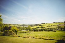 Vue panoramique sur le magnifique paysage rural dans la journée — Photo de stock
