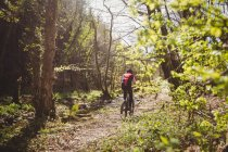 Rear view of mountain biker riding amidst trees in forest — Stock Photo