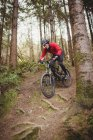 Mountain biker moving down amidst tree in forest — Stock Photo