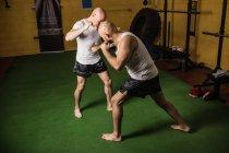 Высокий угол обзора тайских боксеров, практикующих бокс в тренажерном зале — стоковое фото